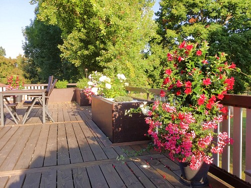 Hotel Mittmann Bad Kissingen Terrasse